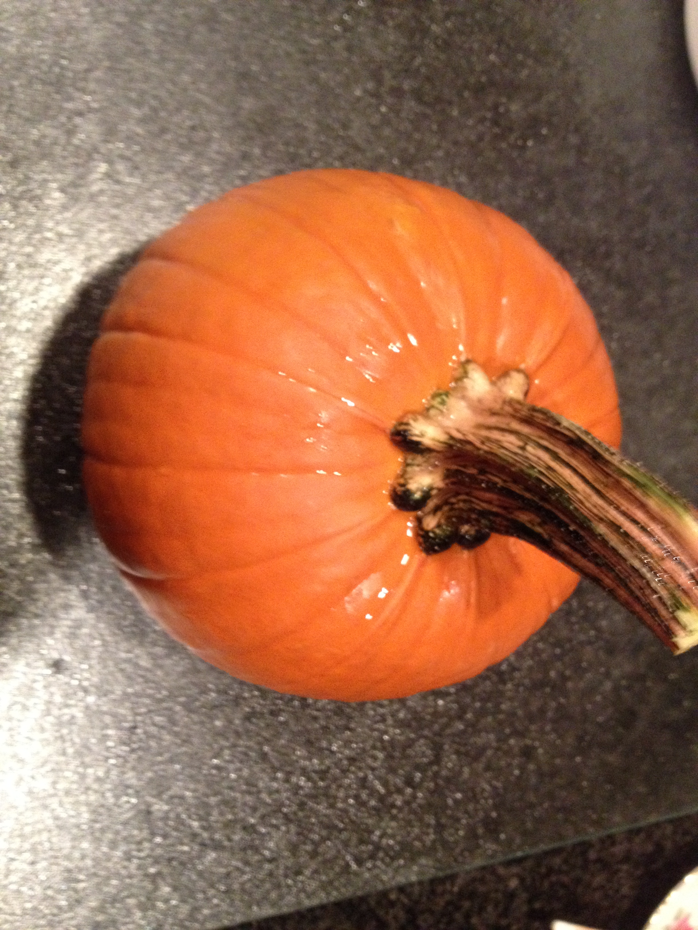how to keep pumpkin fresh after cutting